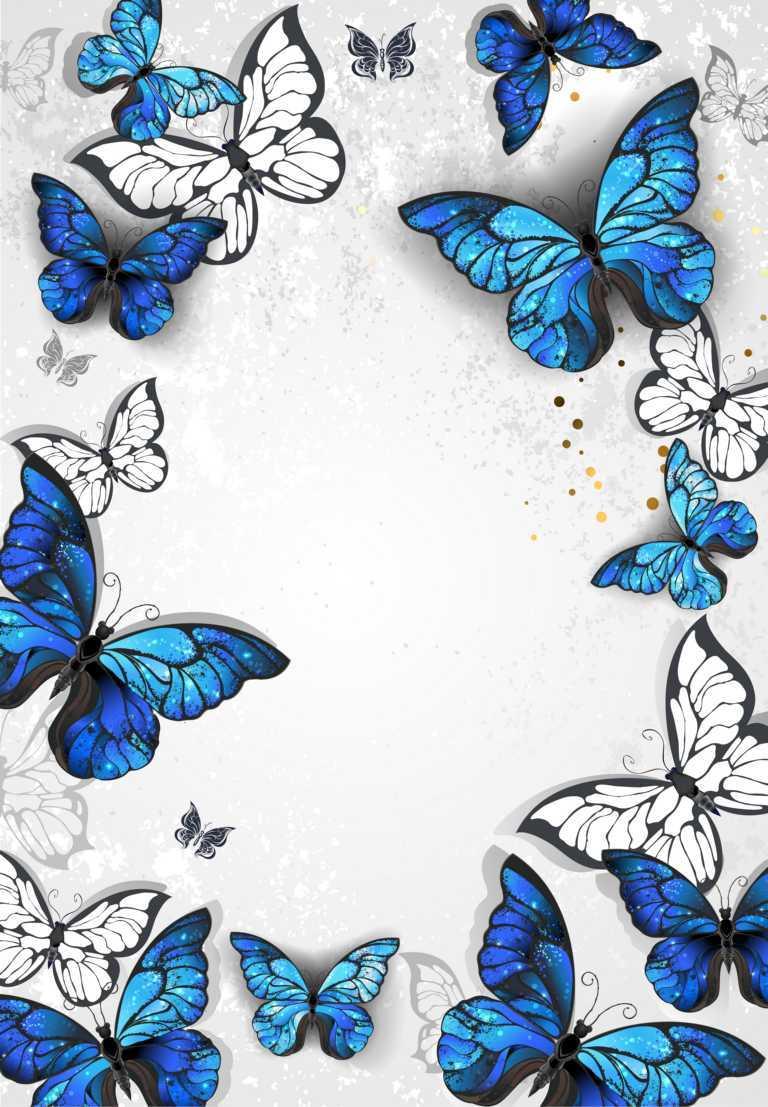Paarberatung- Schmetterlinge
